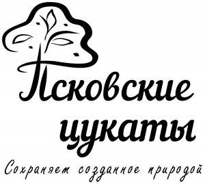 td-forest.com