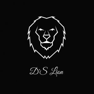 dslion.shop