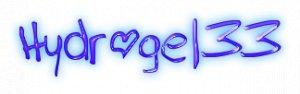 hydrogel33.ru